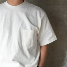 AURALEE「STAND-UP TEE / WHITE 」