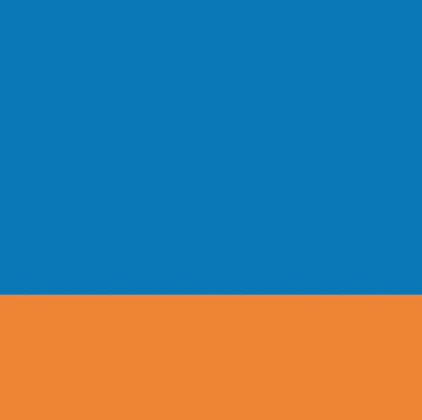 Hender Scheme「typical color exception loafer / #02 blue×orange」