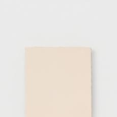 Hender Scheme 「 leather canvas F12 」