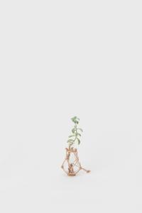 Hender Scheme – science vase:化瓶- 「 Kjeldahl flask 100ml 」